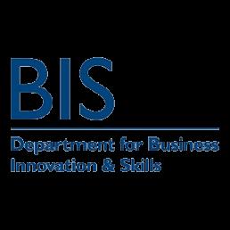 WordPress development search engine optimisation UK Business Mentoring BIS Department for Business Innovation & Skills